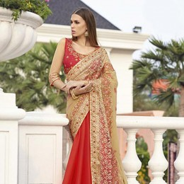 Beige Colored Embroidered Faux Georgette Net Partywear Saree