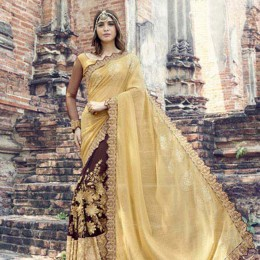 Brown and Yellow Party Wear Saree