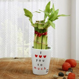 Personalized Love Bamboo